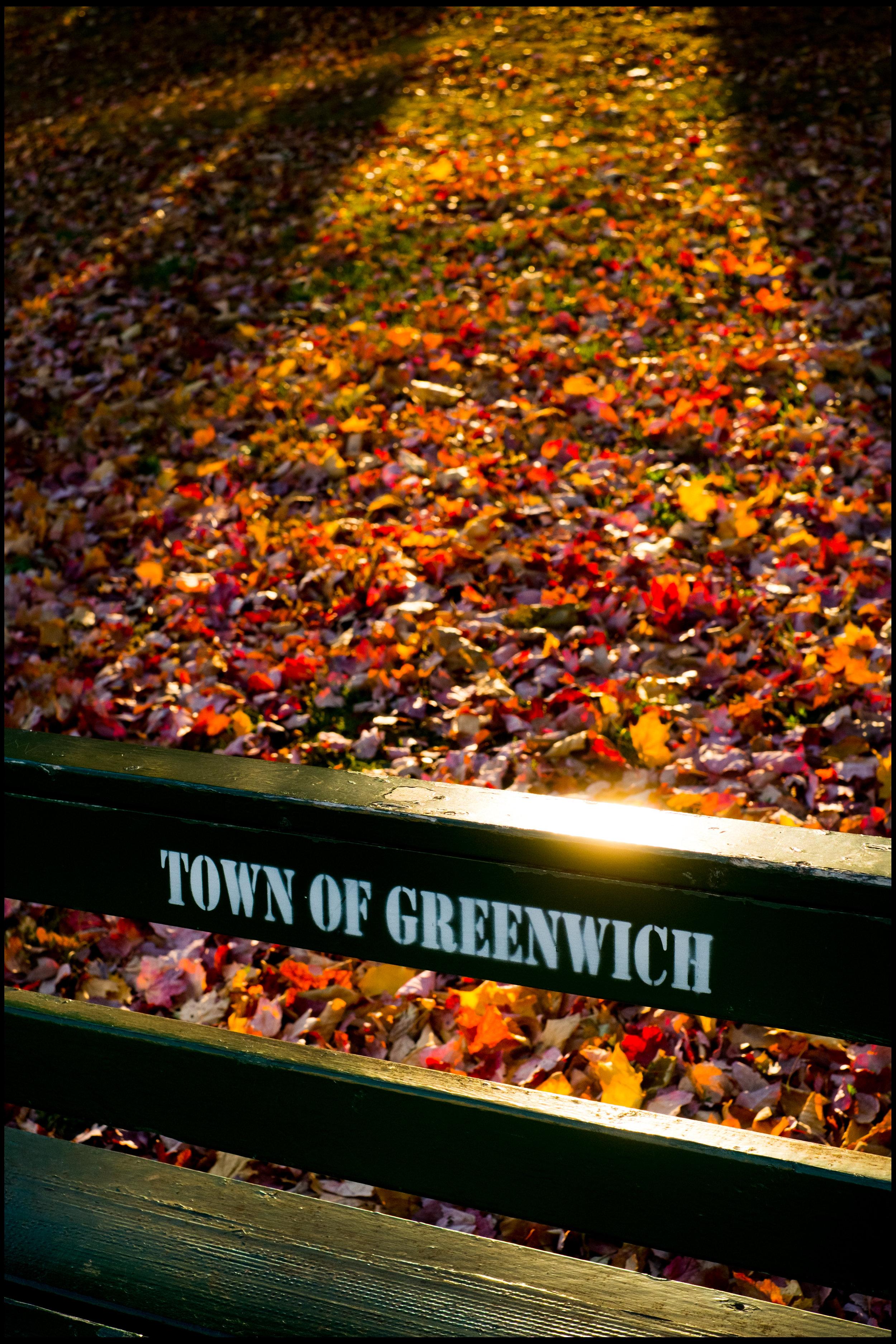 GREENWICH AVENUE-1145.jpg