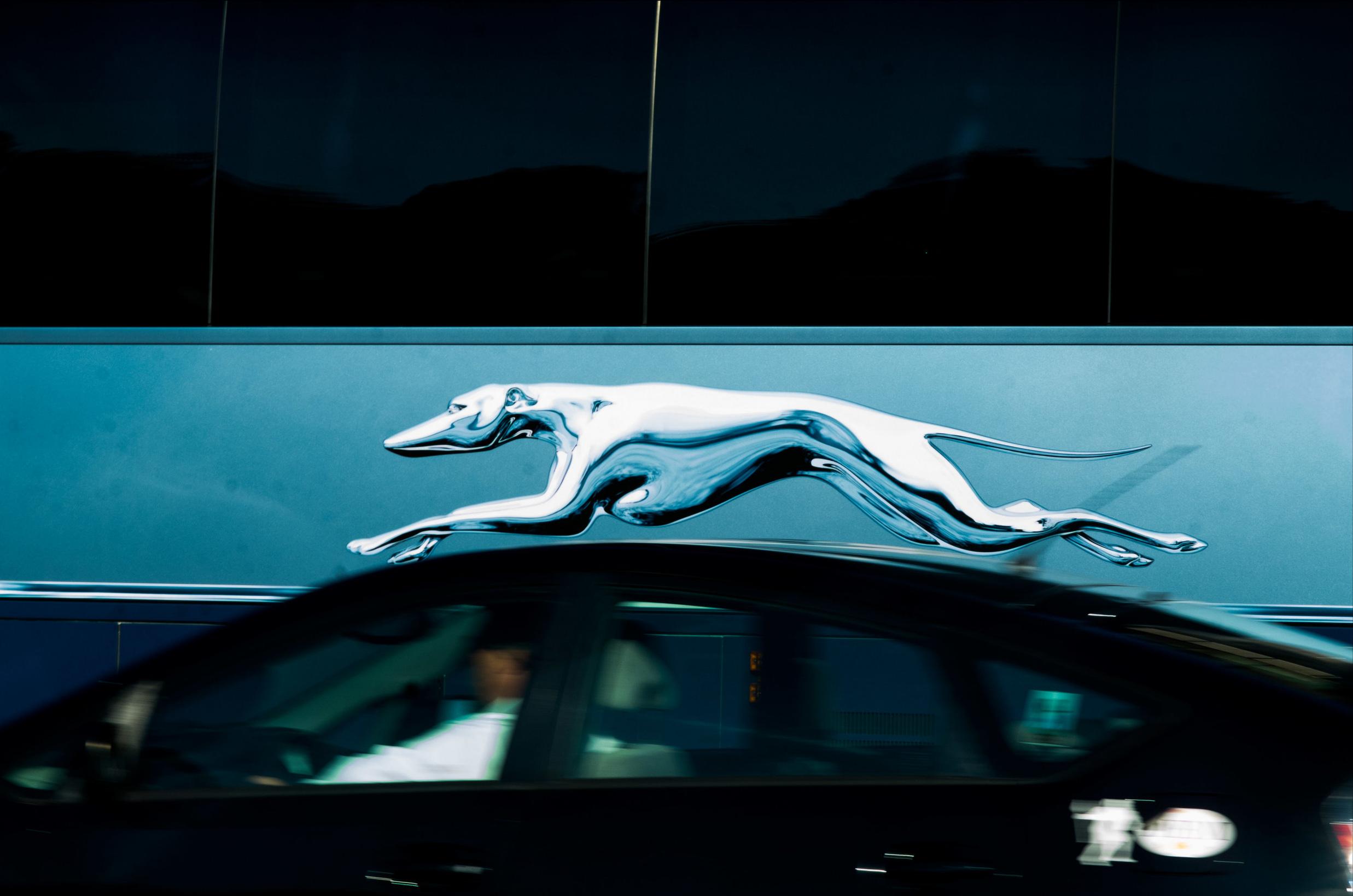 GRAYHOUND_CAR.jpg