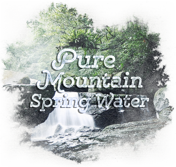espirito cachaca pure mountain spring water source rainforest waterfall