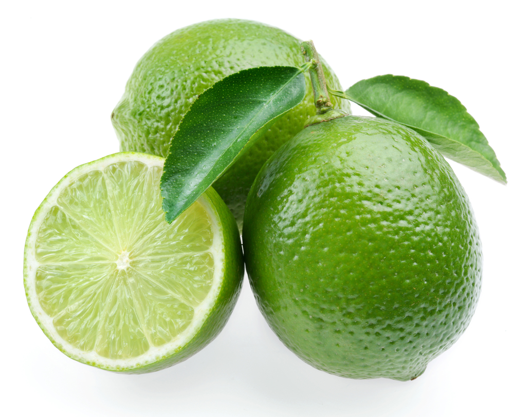 Persian Lime - America's favorite lime variety