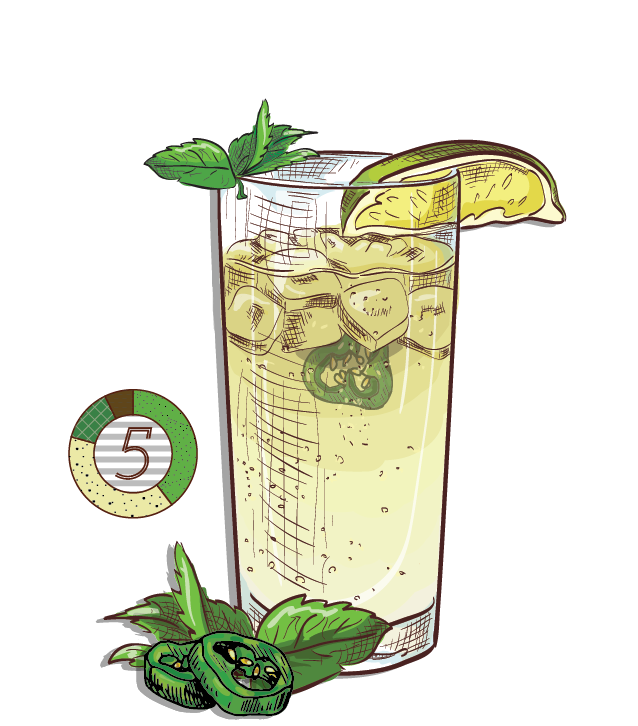 Headless Mule - Espirito XVI Cachaca brazilian moscow mule mint ginger beer lime cocktail