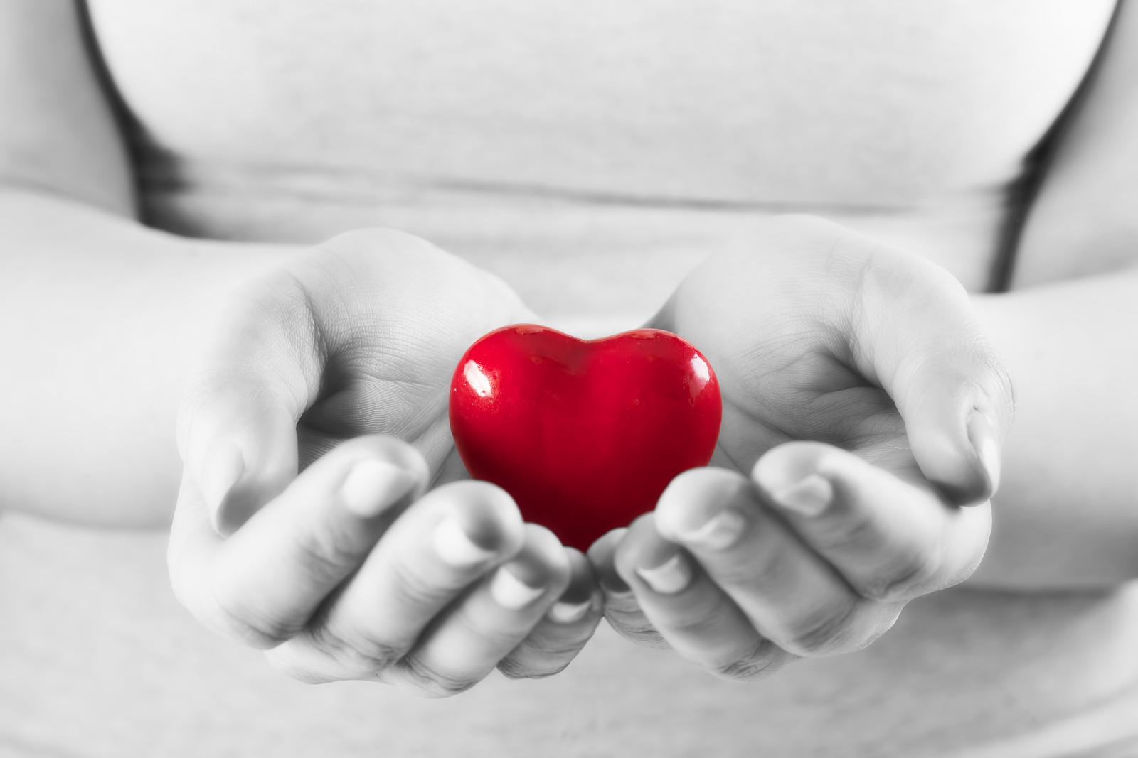 bigstock-Heart-in-woman-hands-Love-giv-87654197.jpg