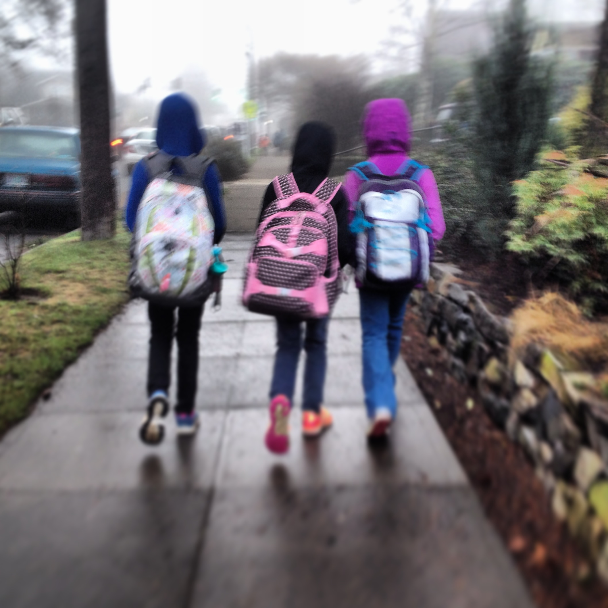 14 01 17 Walking to school - Lindsay Raban.jpg