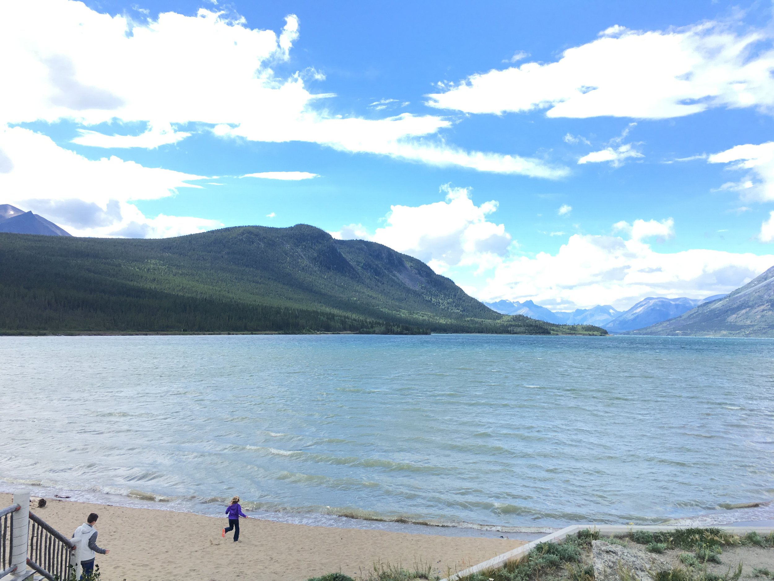 Full Day Yukon Van Tours - Skagway, Alaska