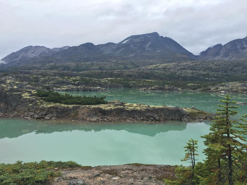 White Pass Summit Van Tours - Skagway, Alaska