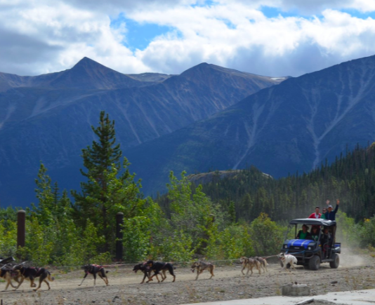 Yukon Dog Sledding - Skagway, Alaska