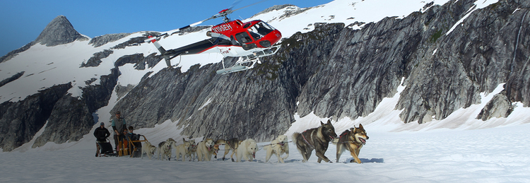 Helicopter Dog Sledding - Juneau & Skagway, Alaska