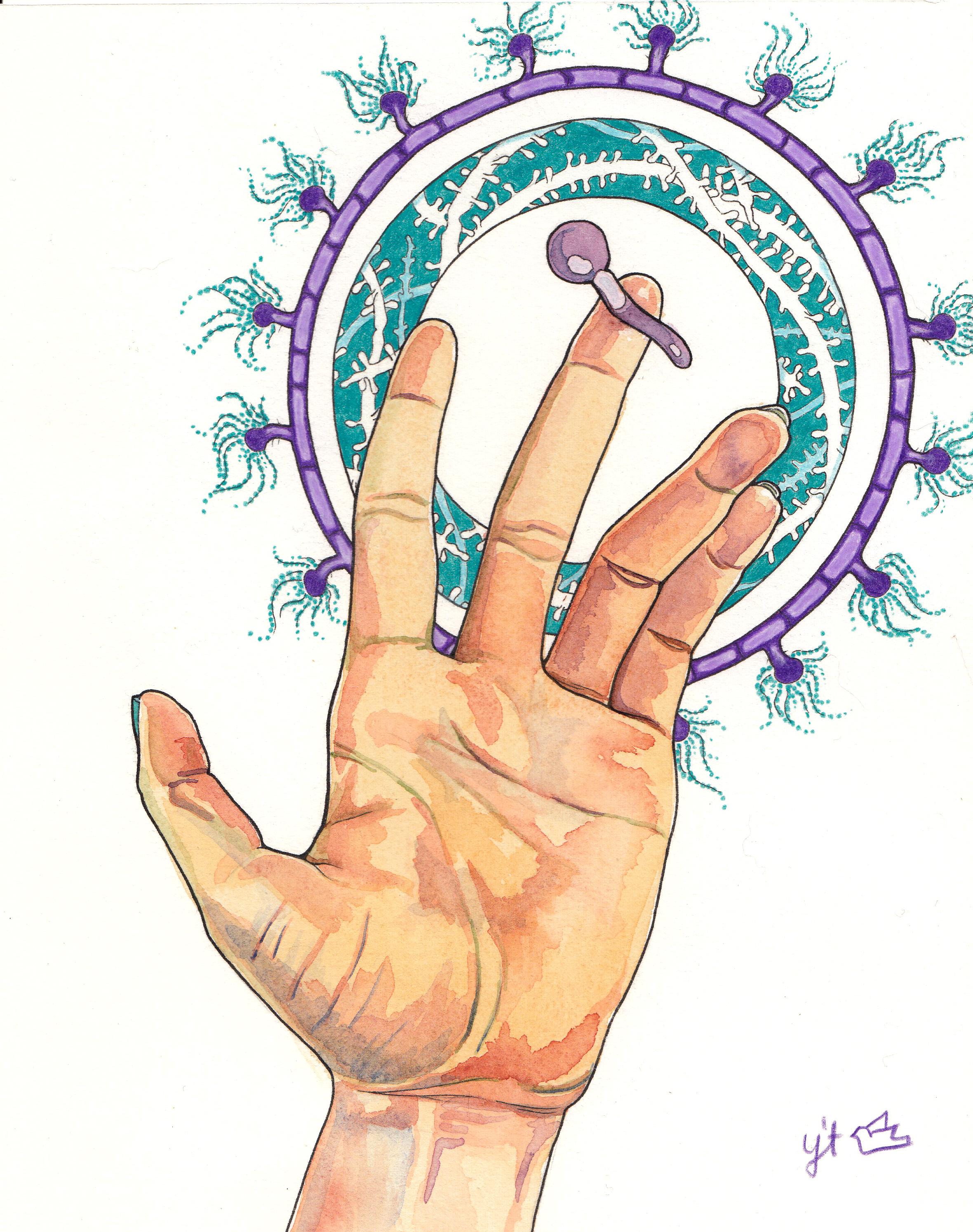 Microflora Meditation 3