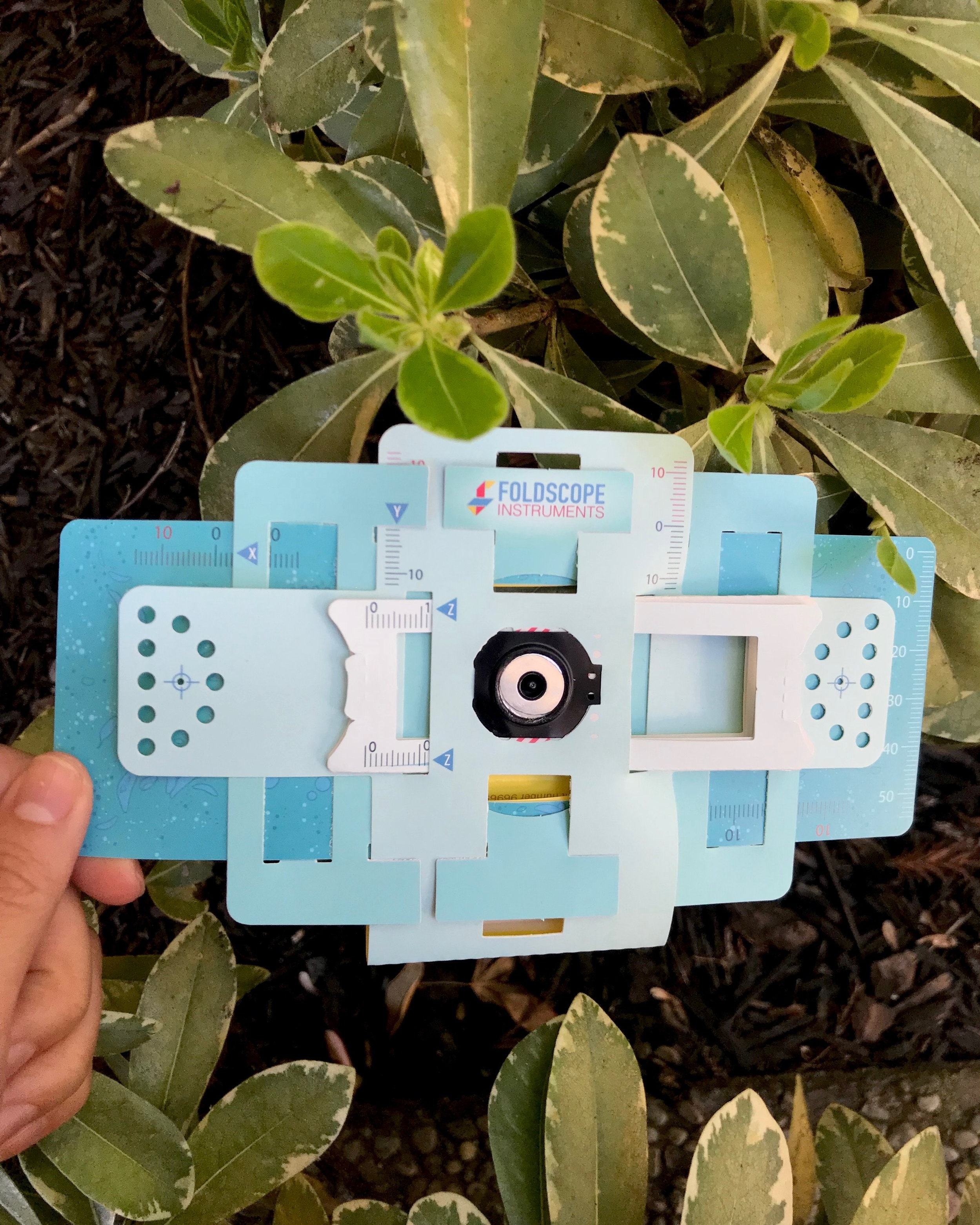 Foldscope clipped onto a leaf
