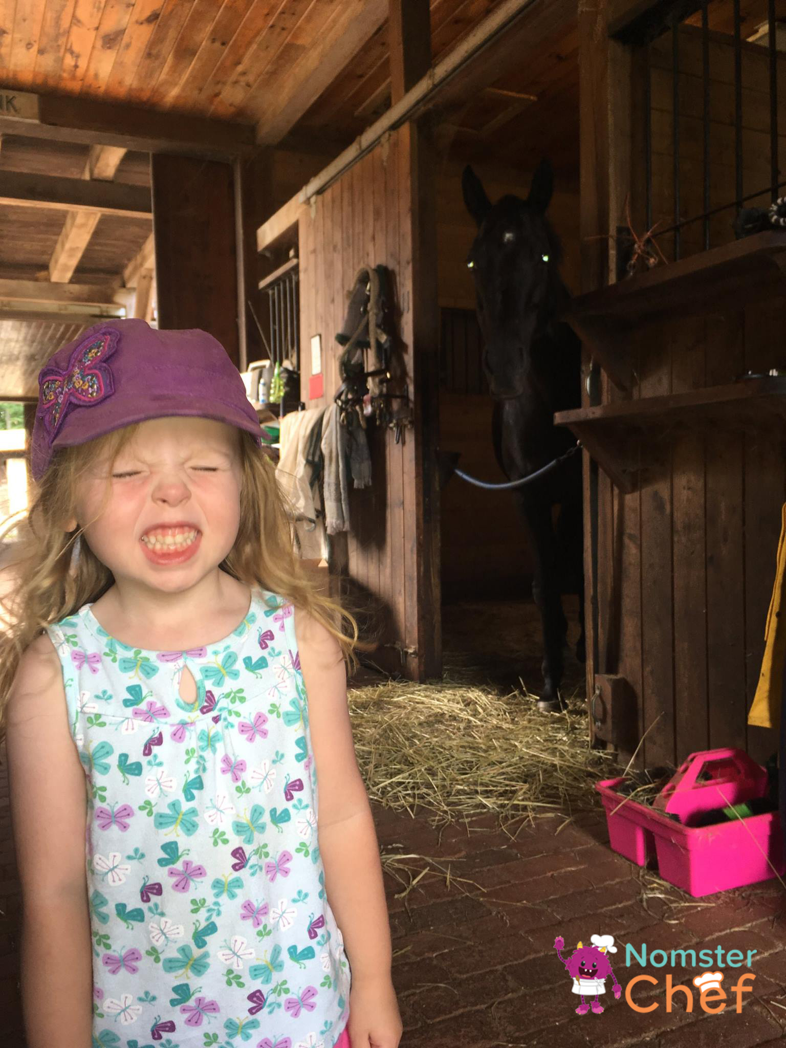 Summer fun for kids- visit a farm and learn how food grows-stinky barn-Nomster Chef