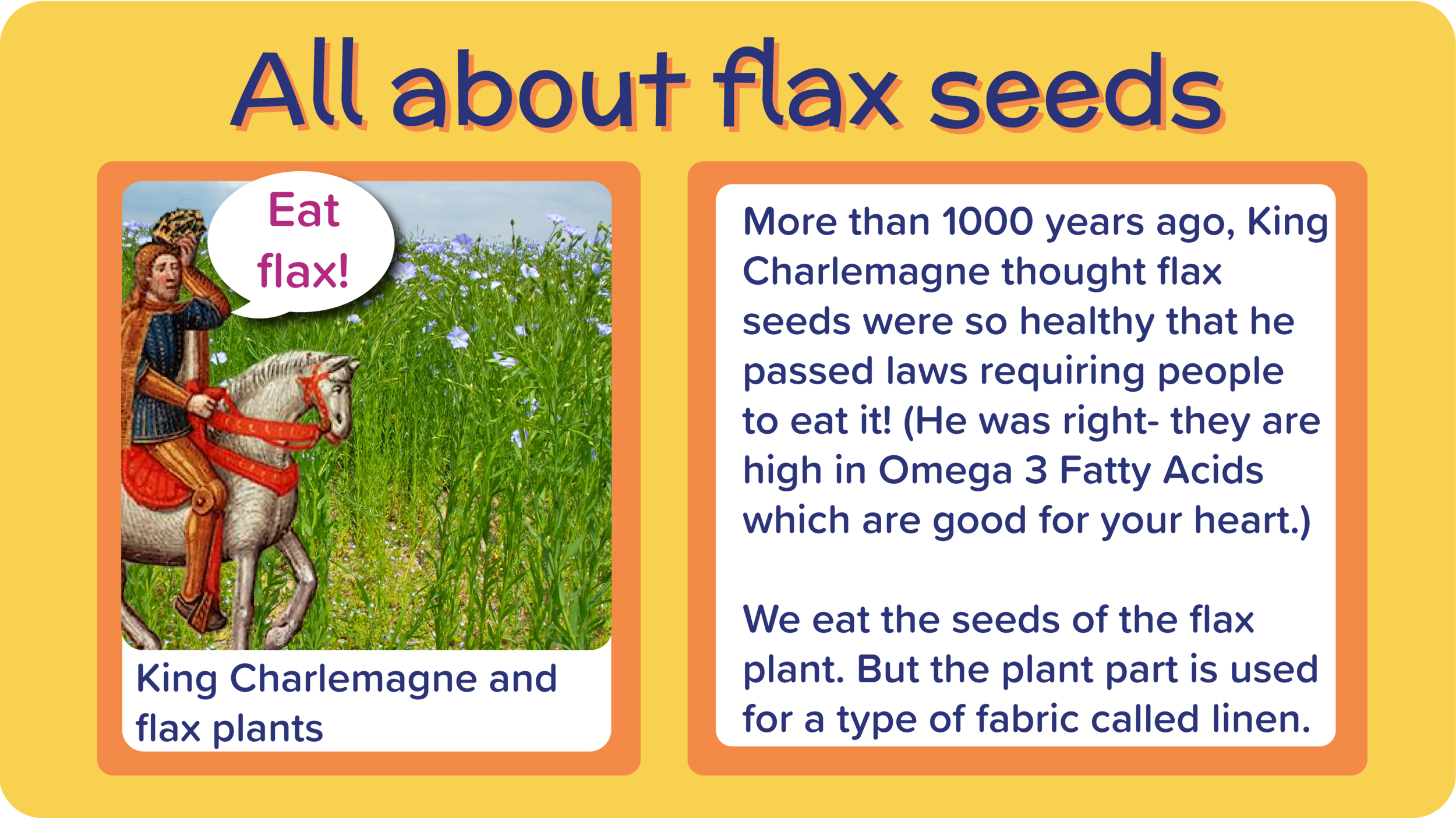 07_BlueberryMugMuffin_all about flax-01.png