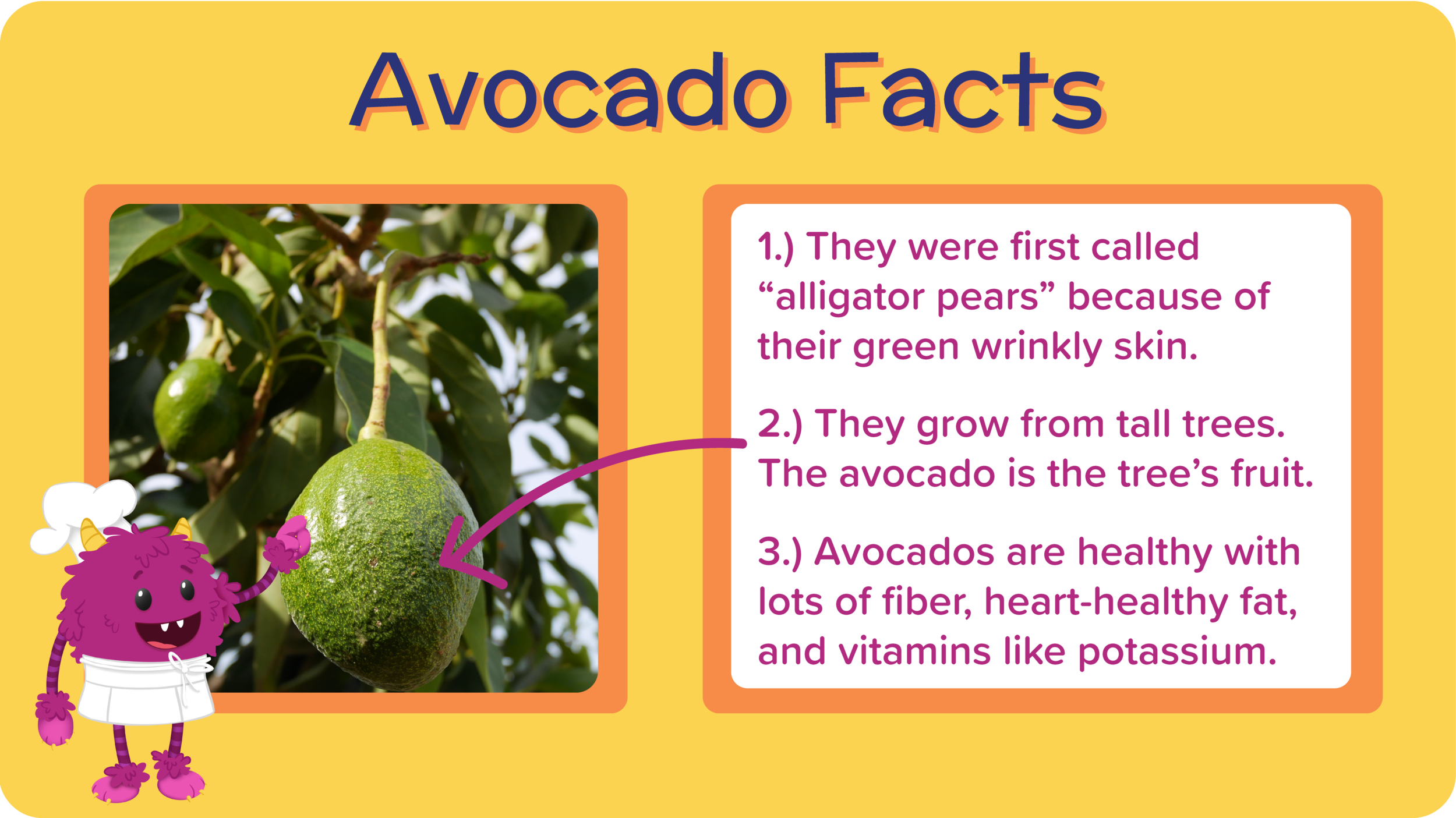 11_GreatGreenGuacamole_all about avocado-01.png