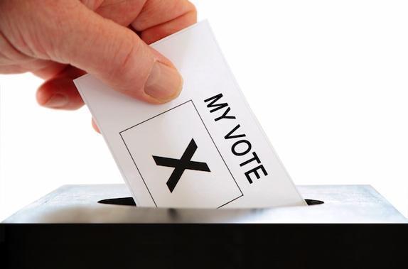 votes.jpeg