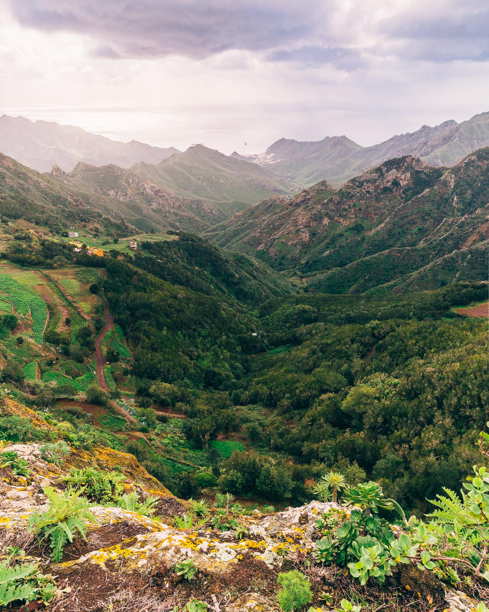 Macizo de Anaga – What to do in Tenerife-4.jpg
