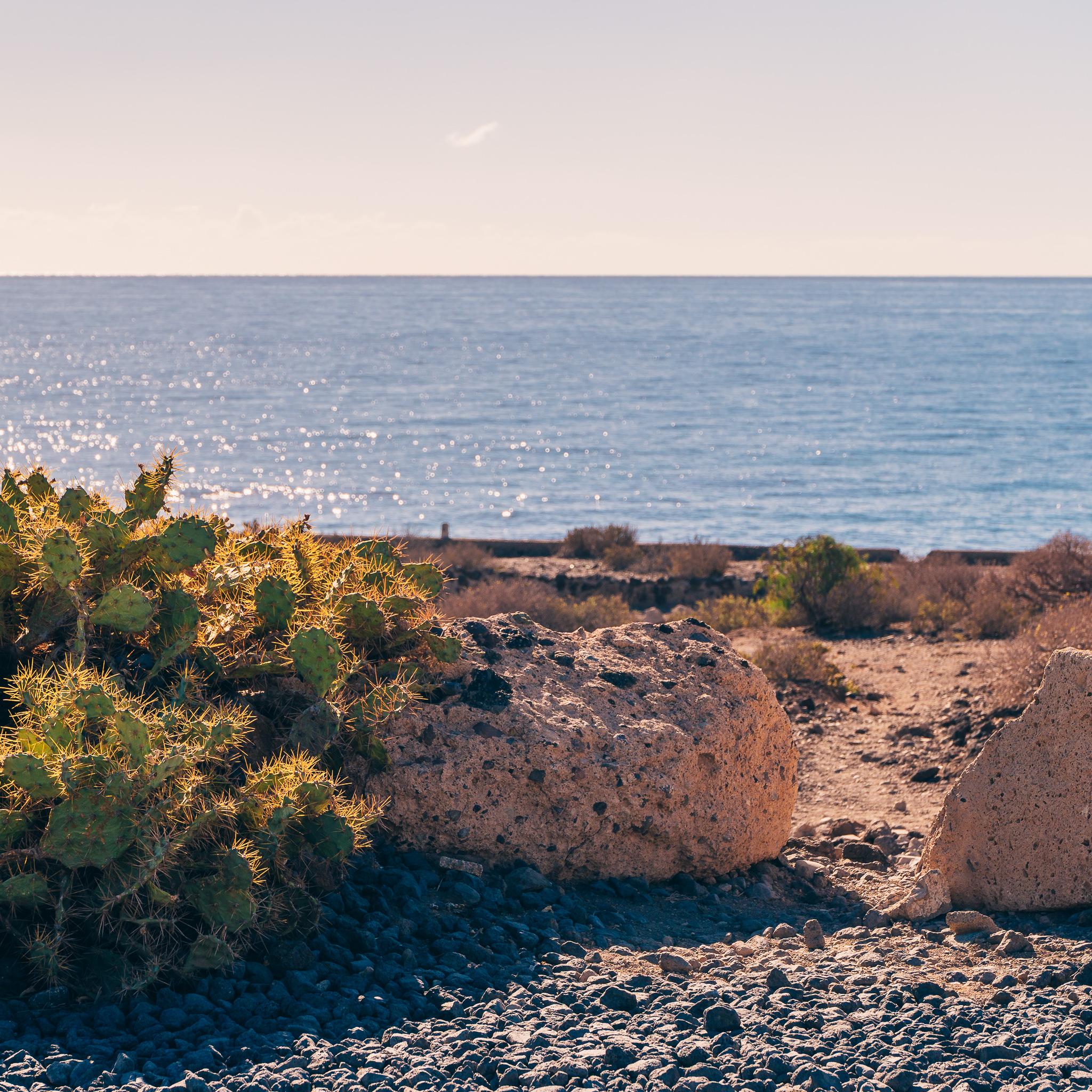 La Tejita Beach – What to do in Tenerife-2.jpg