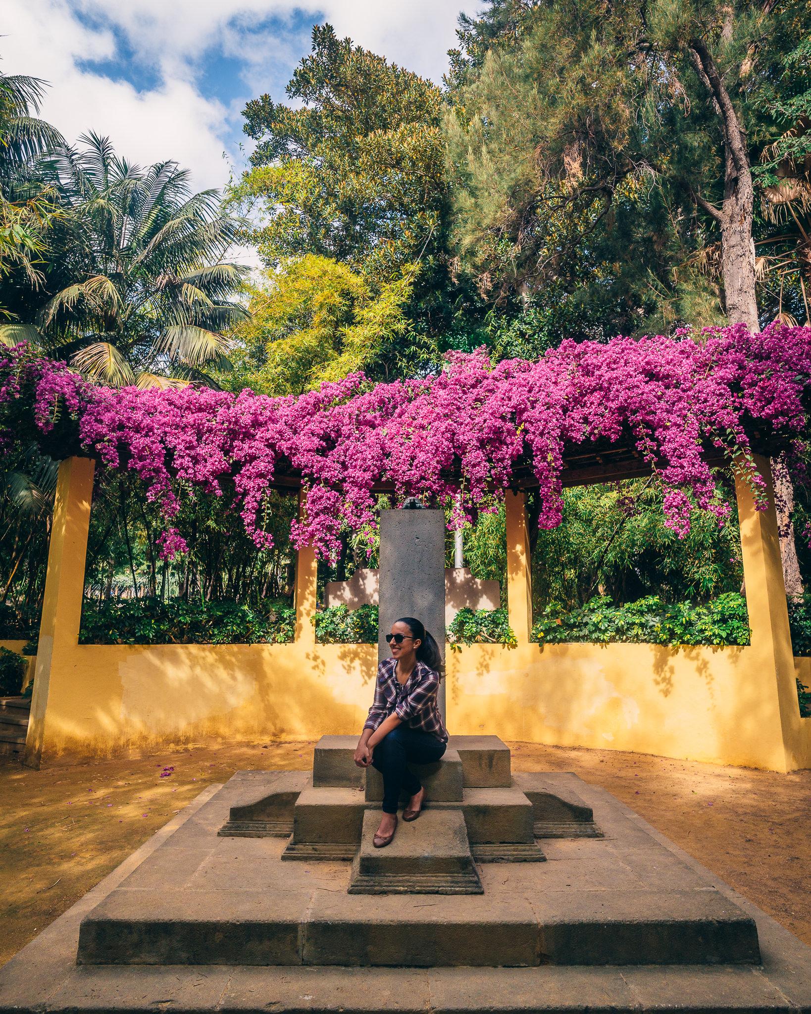 Santa Cruz – What to do in Tenerife-2.jpg