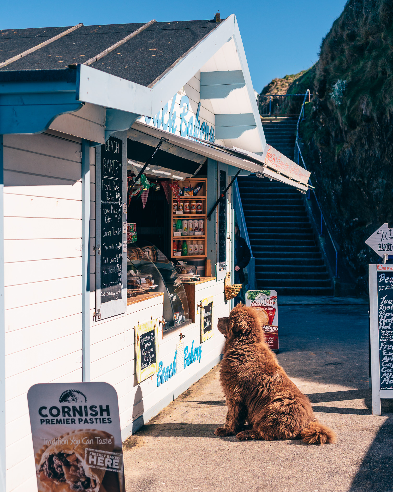 Cornish pasties are all the rage in Cornwall (and in turn, Newquay). People and dogs line up everywhere for 'em.