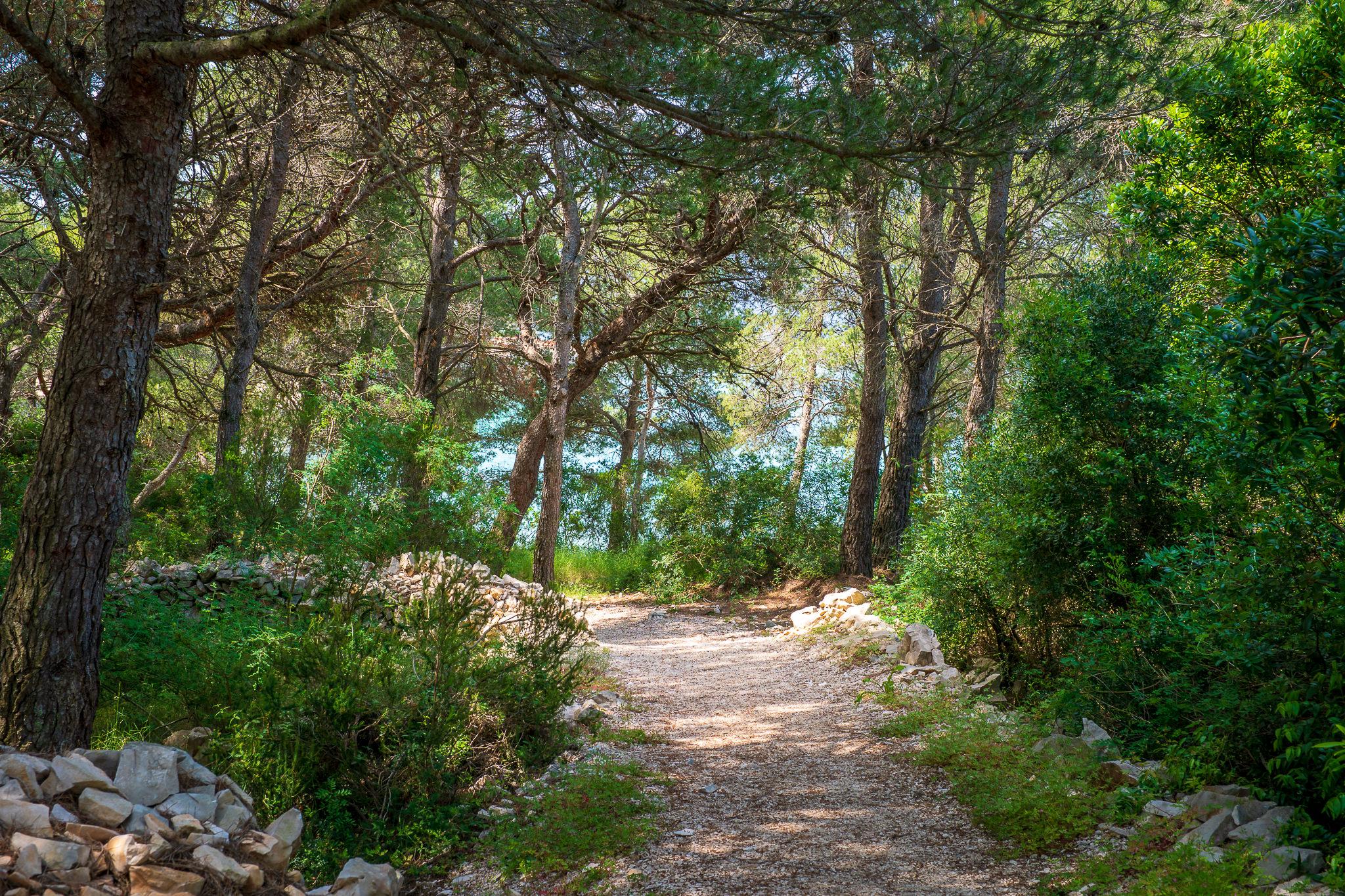 A Week in Croatia — Hvar-4.jpg