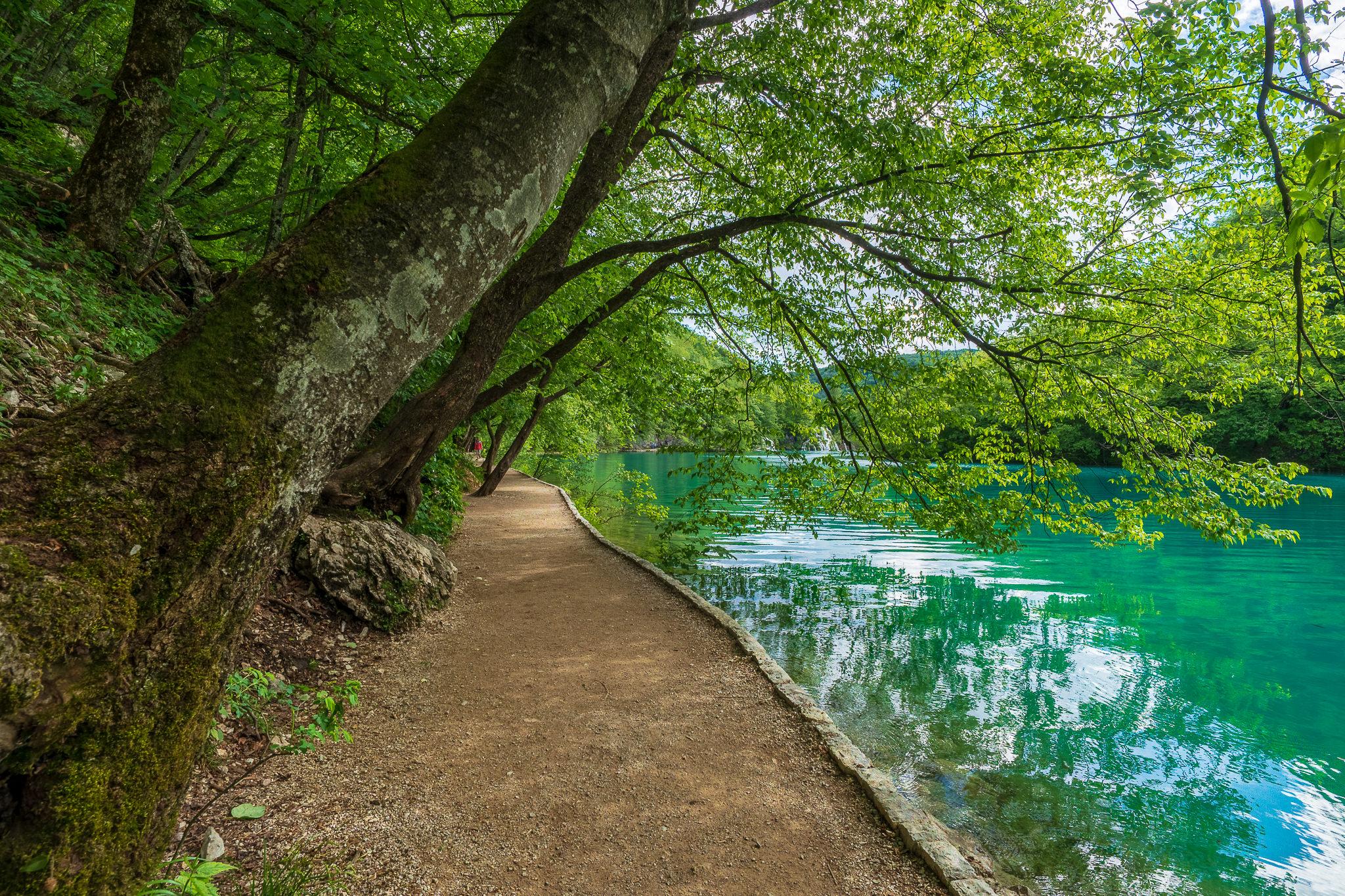 A Week in Croatia — Plitvice-6.jpg