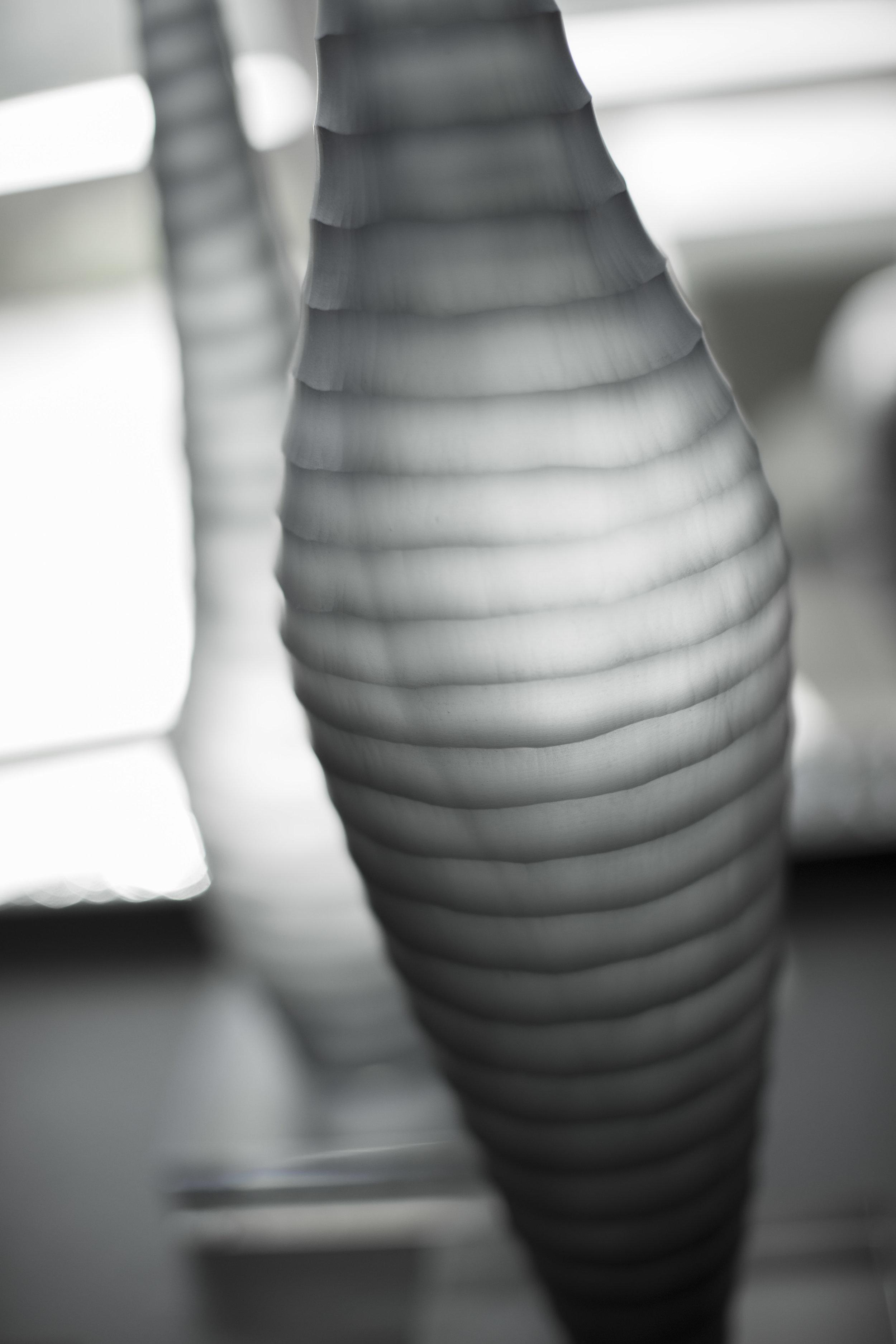 0682.jpg