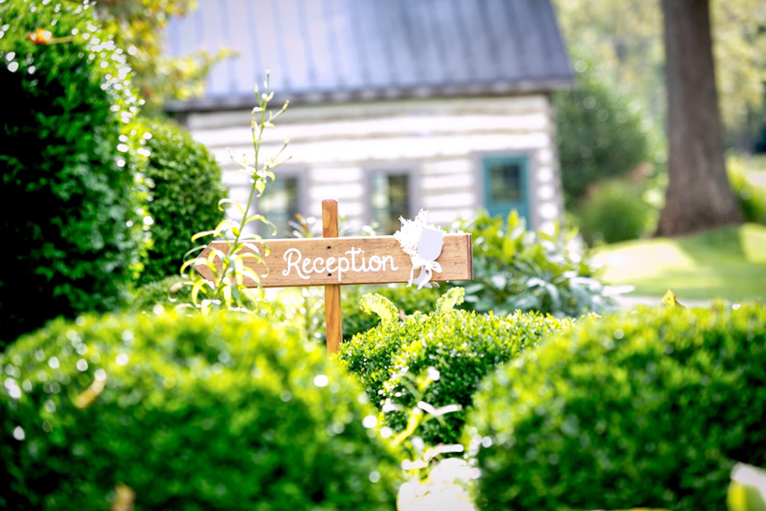 washington dc engagement photography-33.jpg