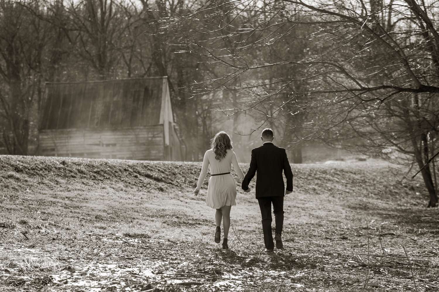 norther virginia engagement photography
