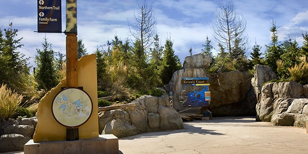 MN_Zoo_Grizly-630Project-2183-630x315.jpg