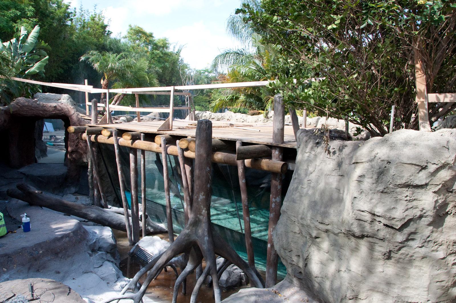 Discovery Cove 5178.jpg