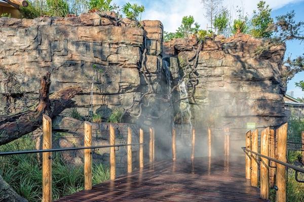 gorilla-exhibit-houston-zoo-march-2015-2.jpg