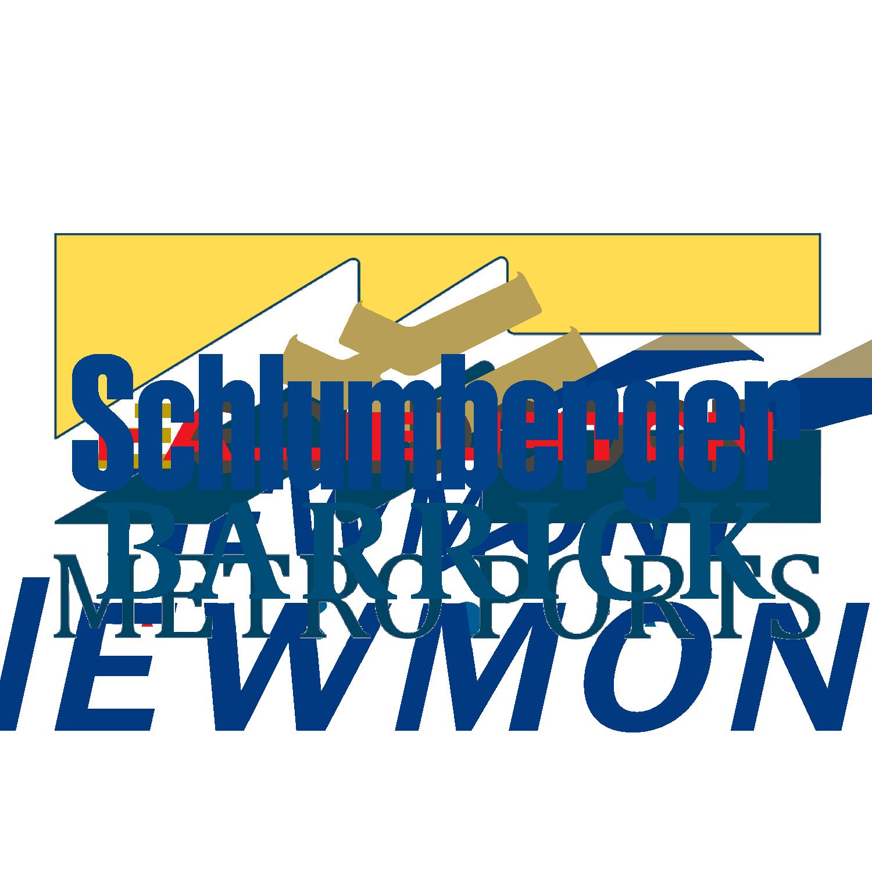 SW_Website_ClientLogos_Slumberger.png