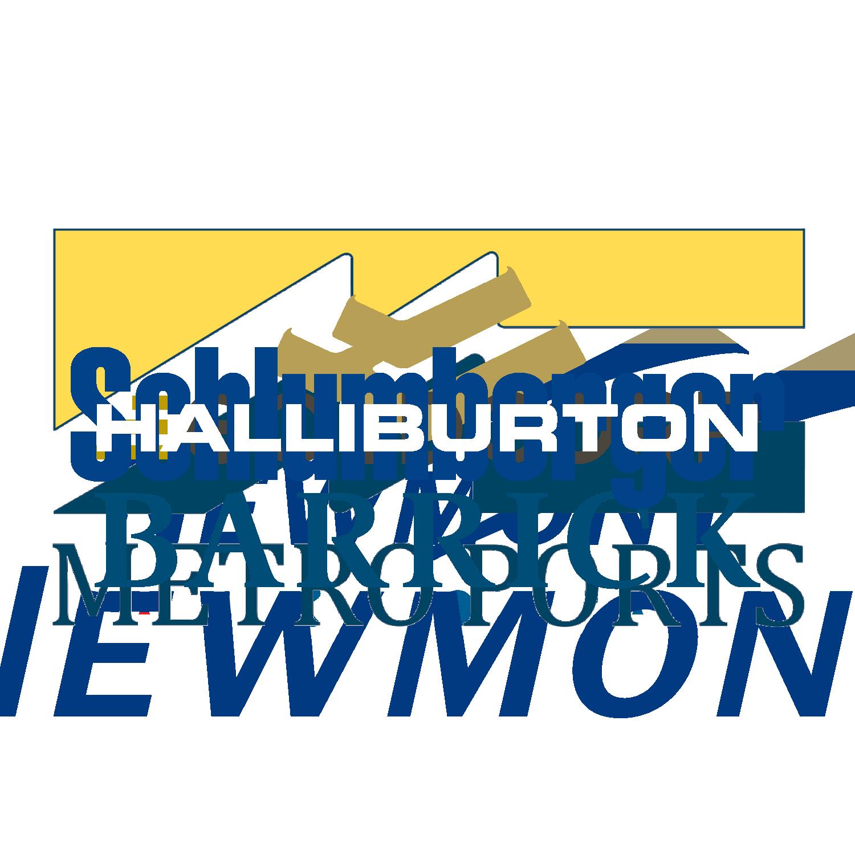 SW_Website_ClientLogos_Halliburton_White.png