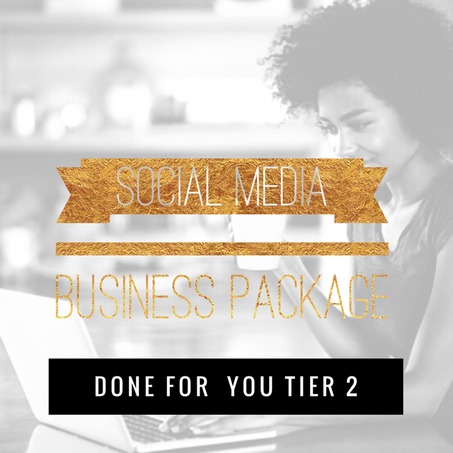 Social Media Business Package Done for You (Tier 2) - 1 Hour Social Media Strategy session to create a Monthly Theme. Create 4 Topics, Up to 50 images created, branded to your business based on the theme and topics we come up with in your strategy session. We will post up to 2 Social Media Accounts, 2-3 Times a day in a 5 day period. Create your client avatar (Ideal Client, Targeted Audience).$450