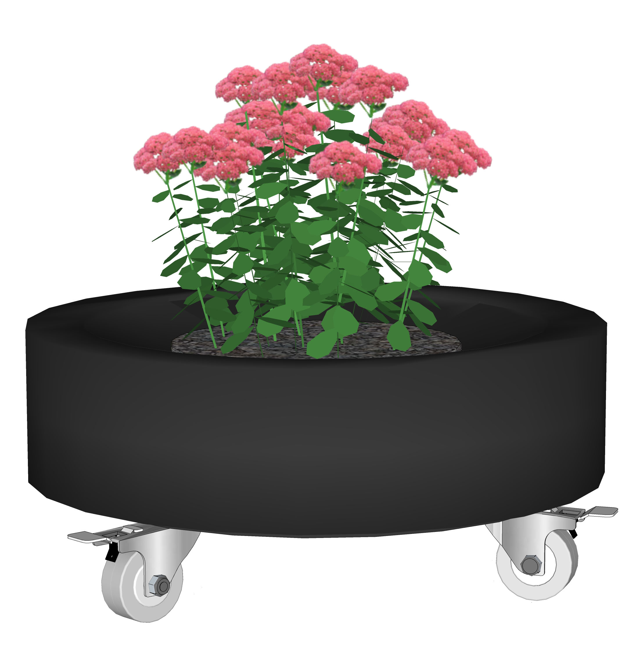 tyre planter Composed 1.jpg