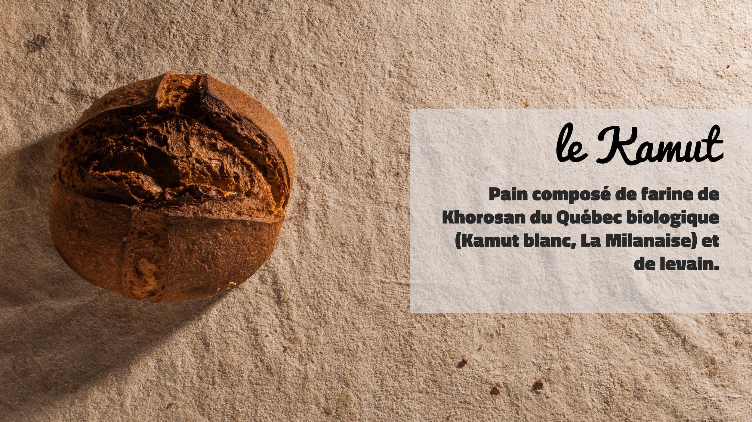 le Kamut