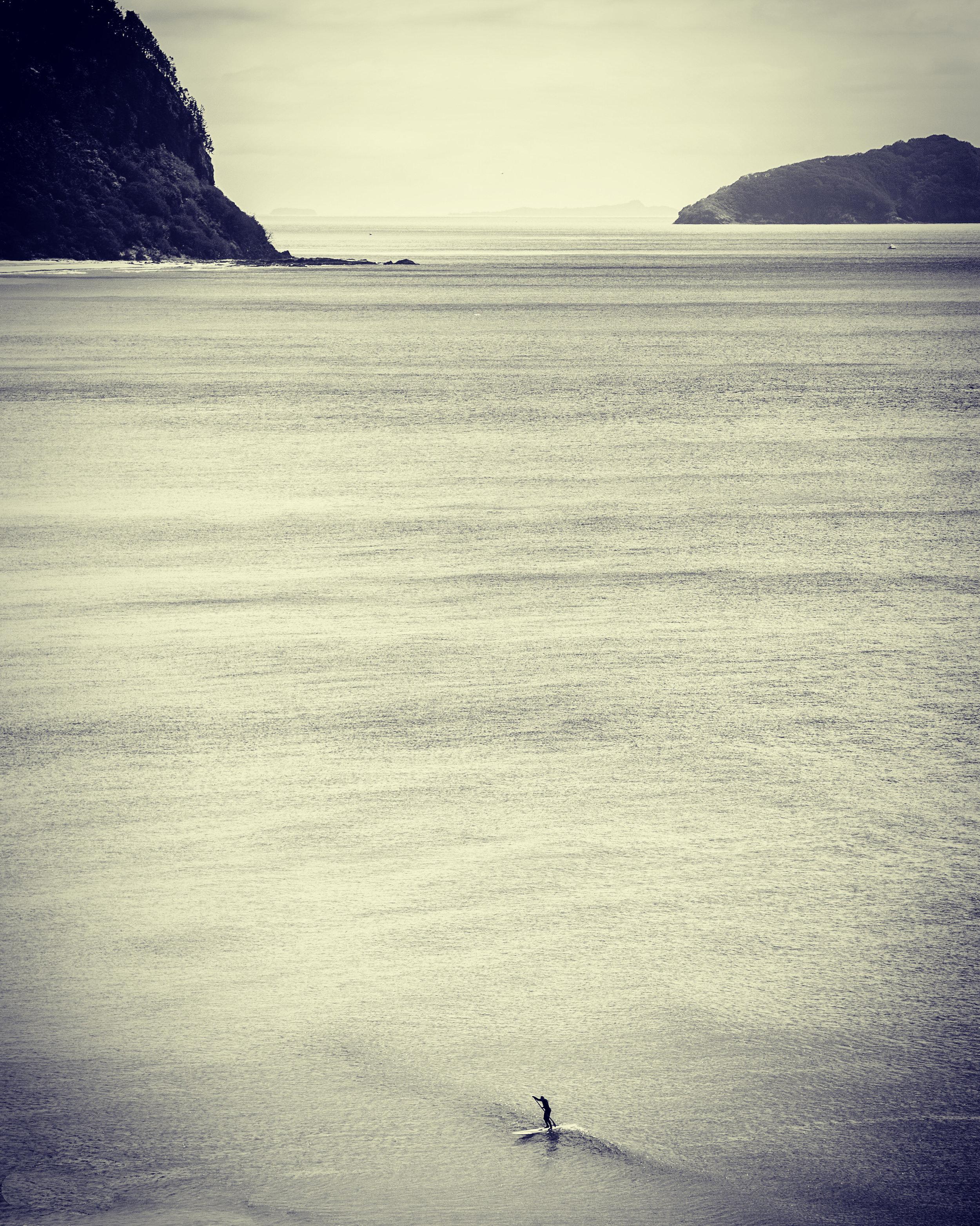 lone paddle.JPG