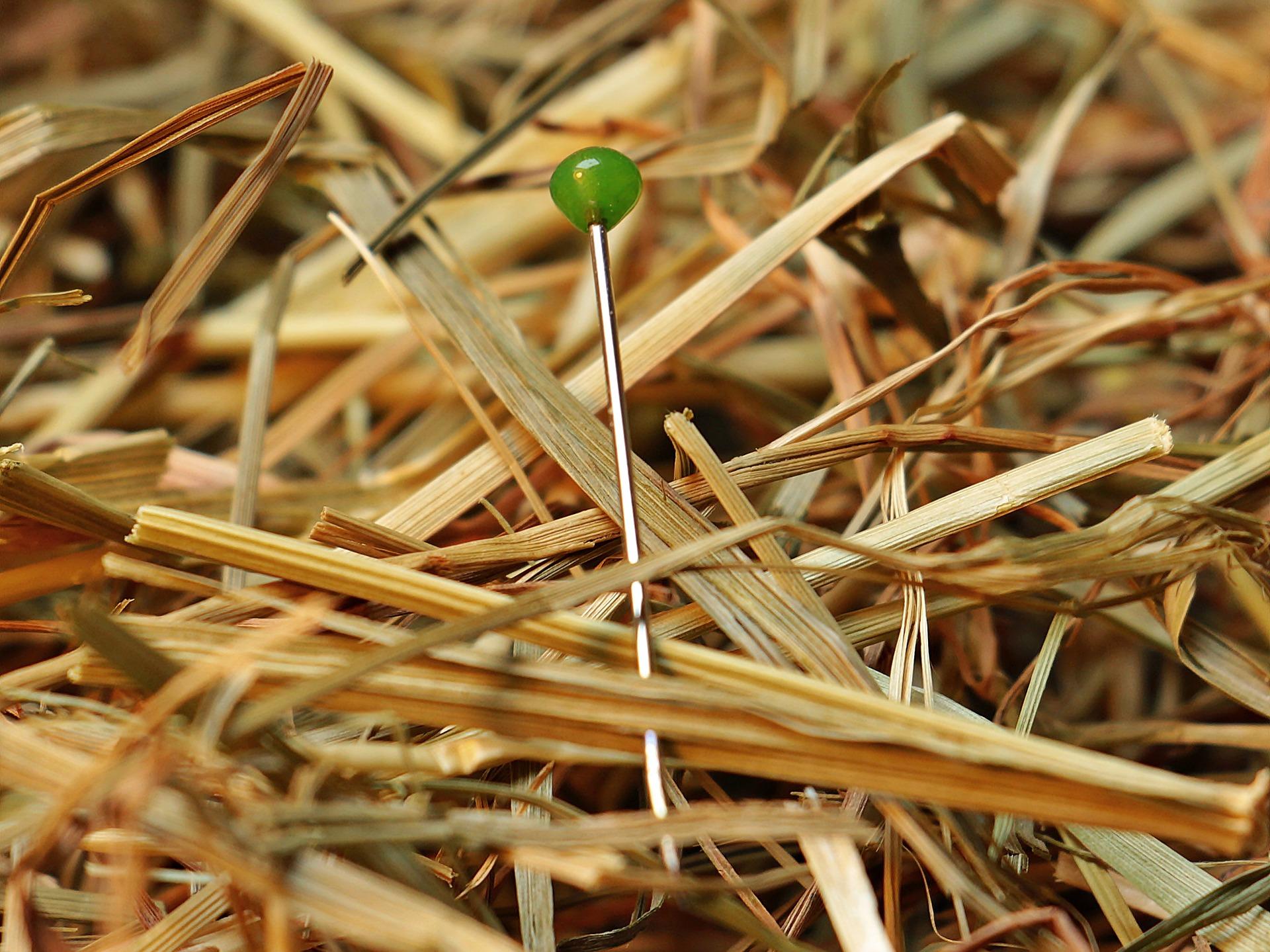 needle-in-a-haystack-1752846_1920.jpg