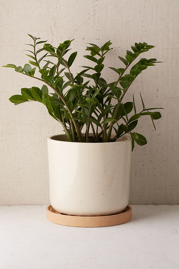 "27. Parker 10"" Planter ($59)"