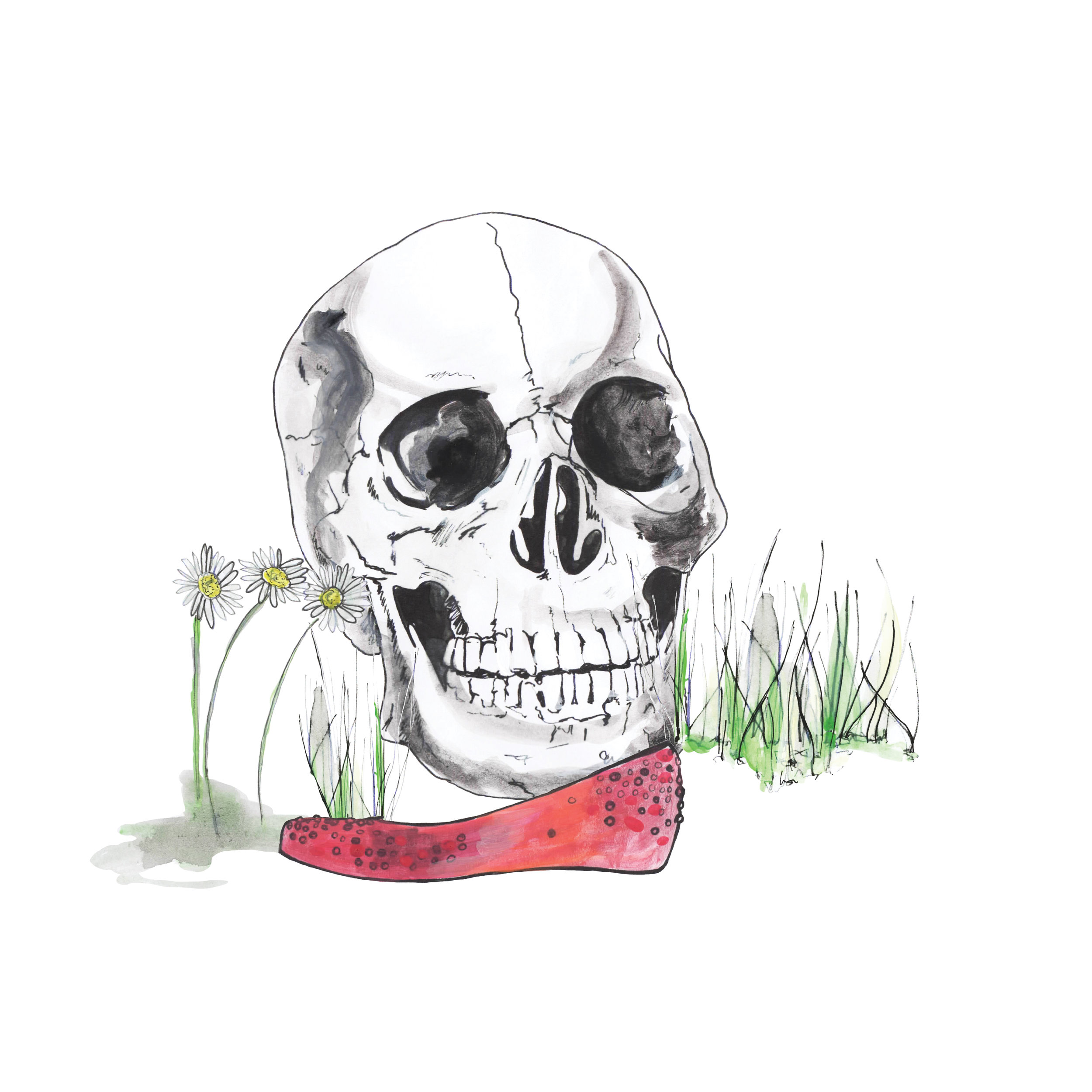 Skull and the Lost Shoe