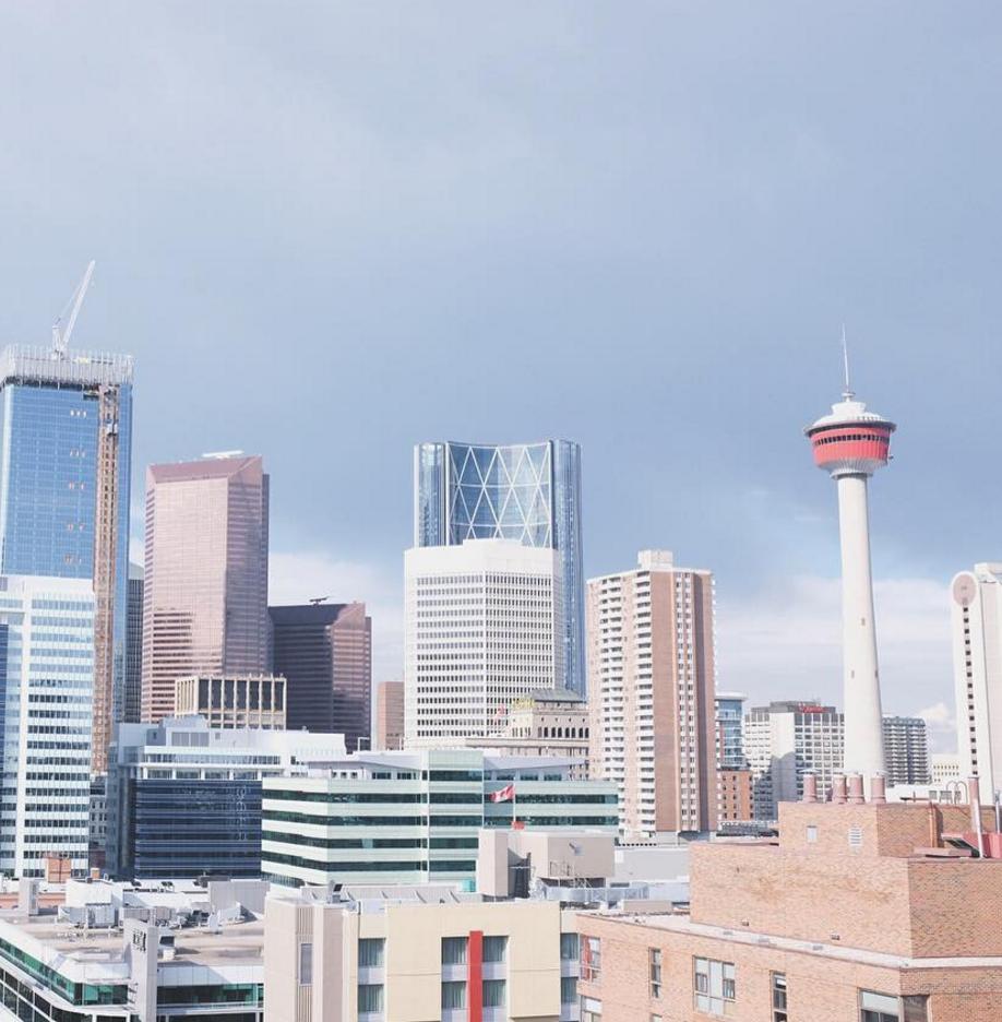 Calgary_Kombucha_True Buch