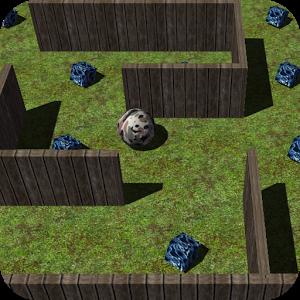 gyro maze.png
