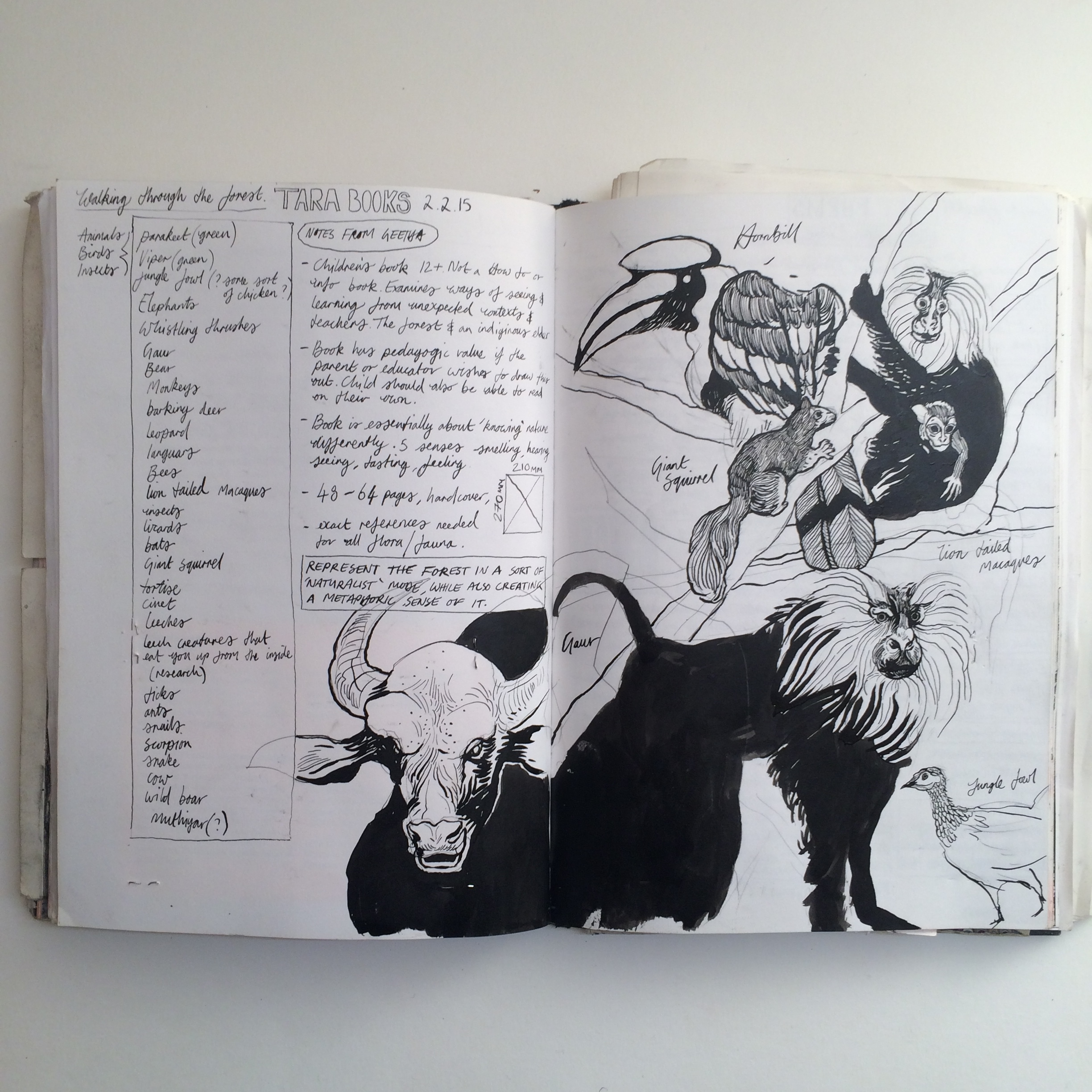 Sketchbook research