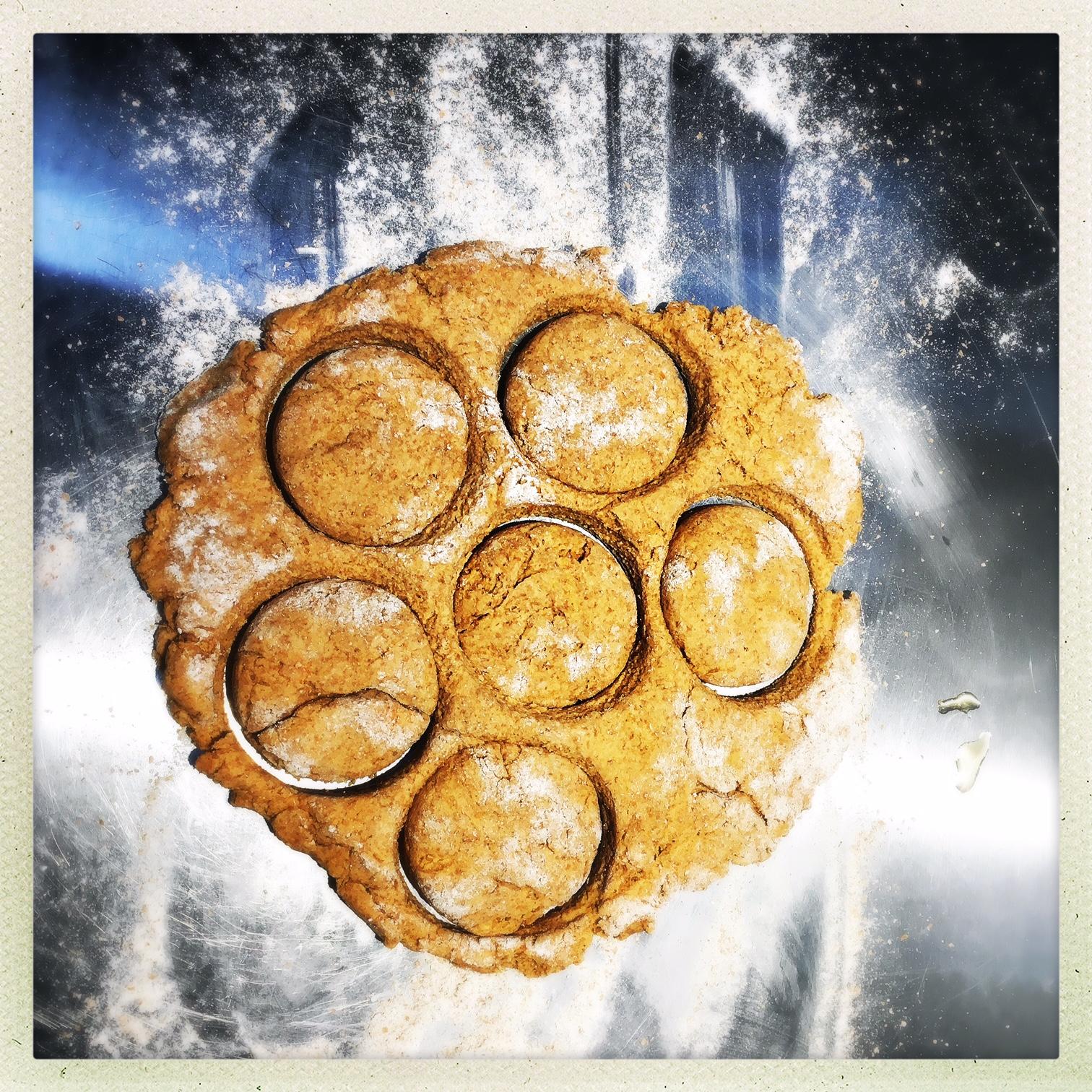 cut biscuits.jpg