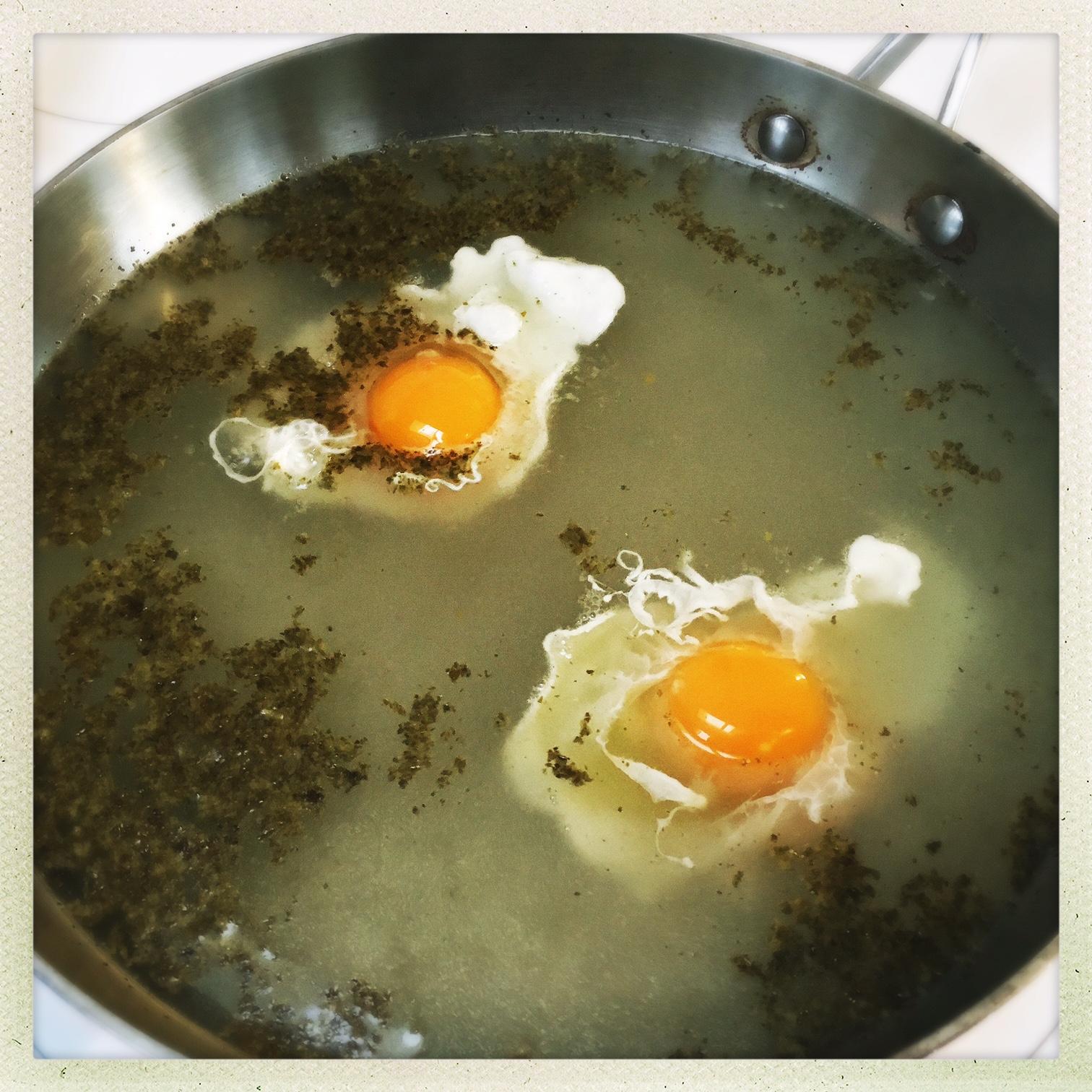 beak eggs into boiling water.jpg