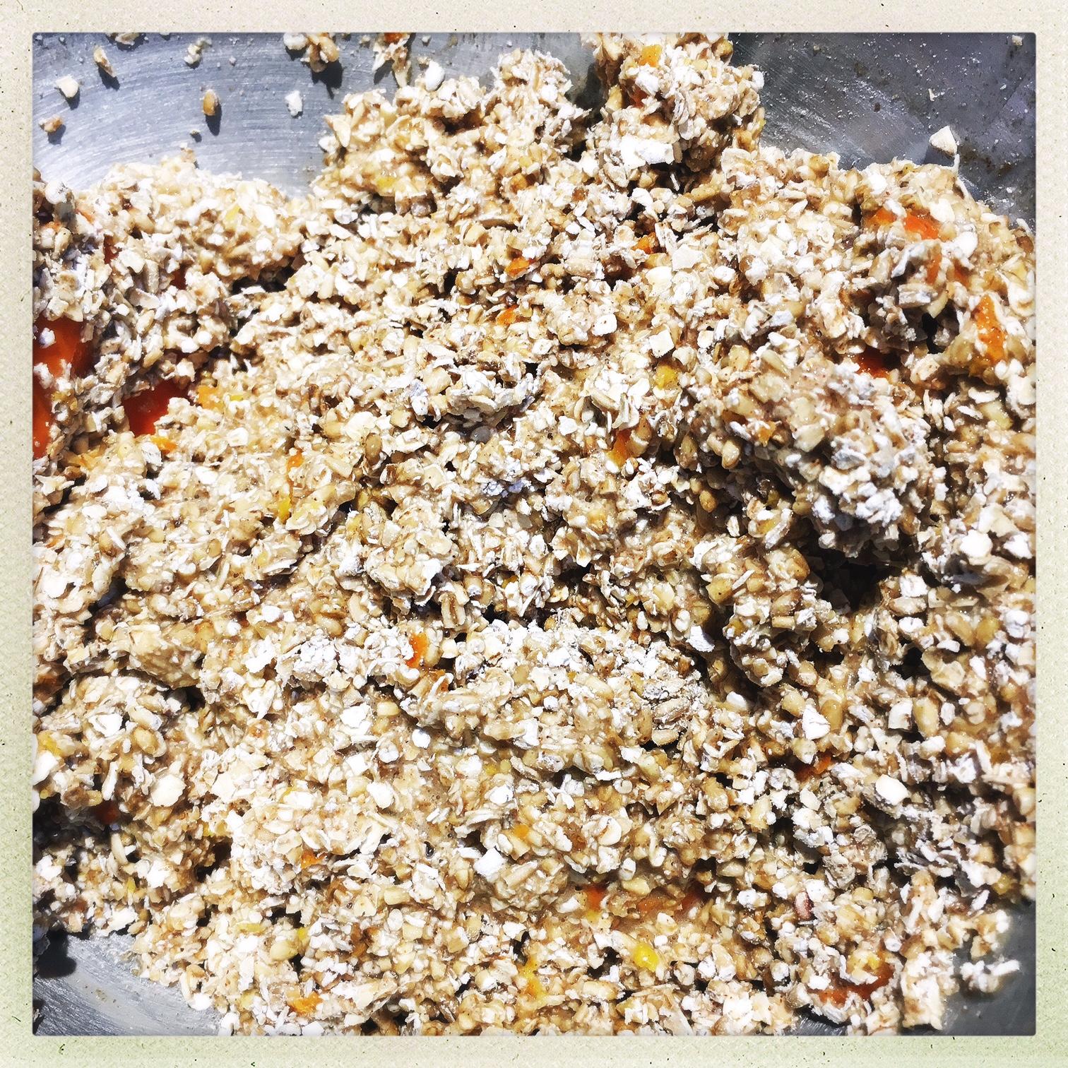 mix in oats.jpg
