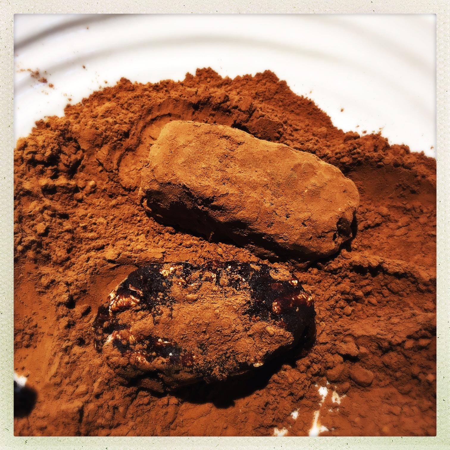 roll in cocoa 3.jpg
