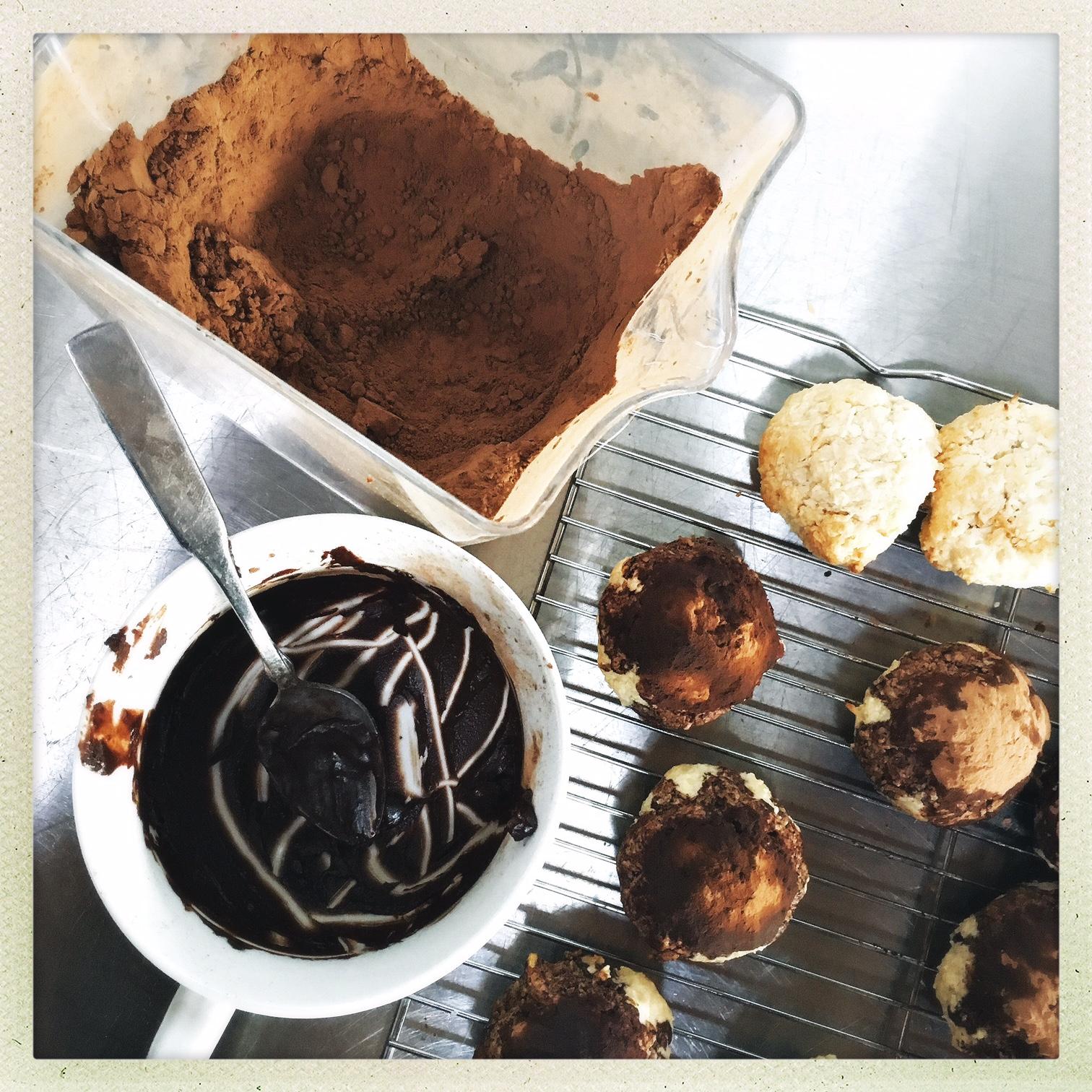 dip into cocoa powder.jpg
