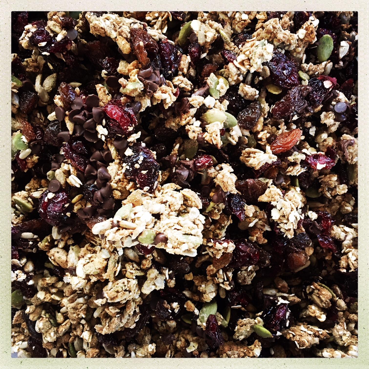 OriginalPchocolate seed protein granola 2hoto-544296445.971780.jpg
