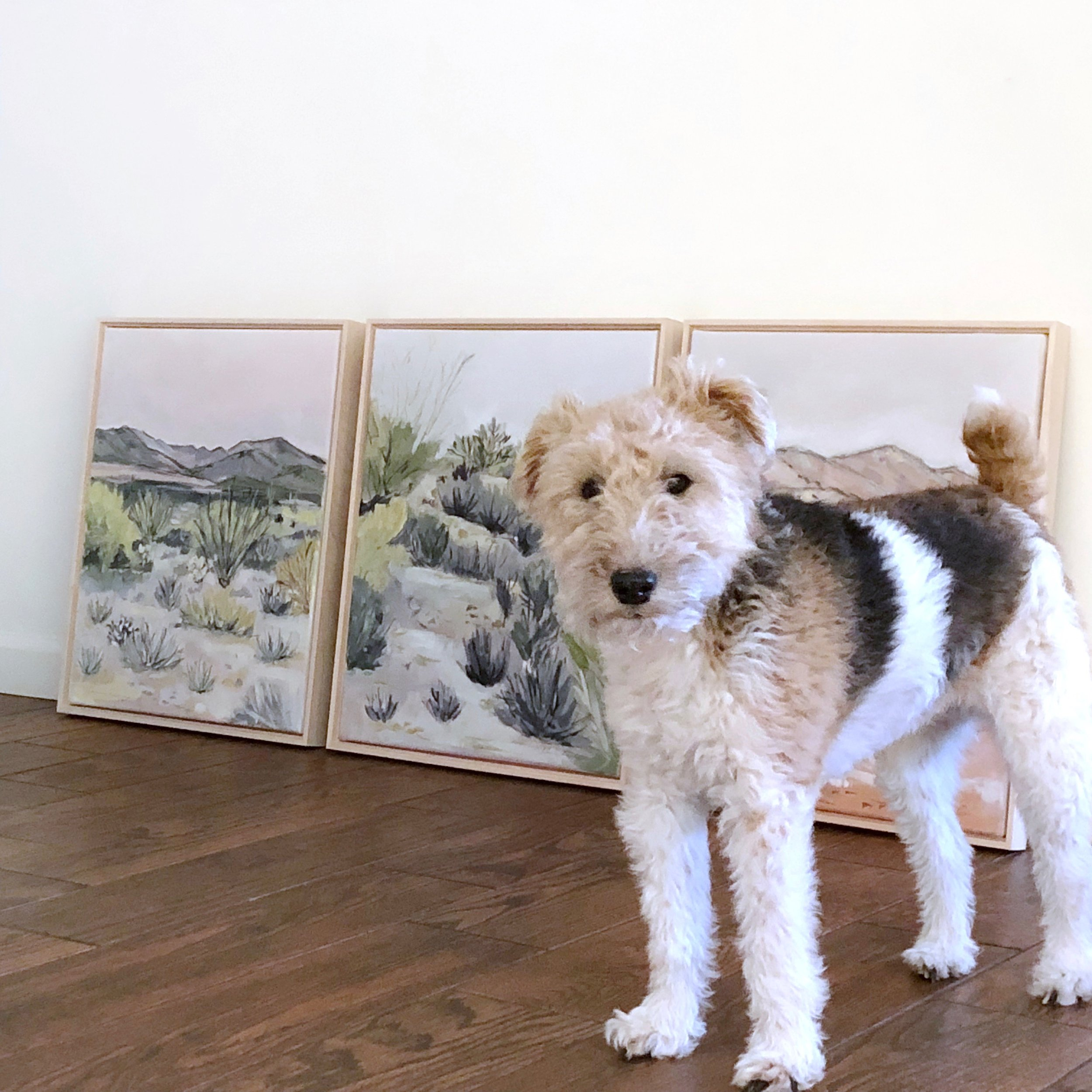 Laurie Anne Art Hazel Dog and Desert Paintings