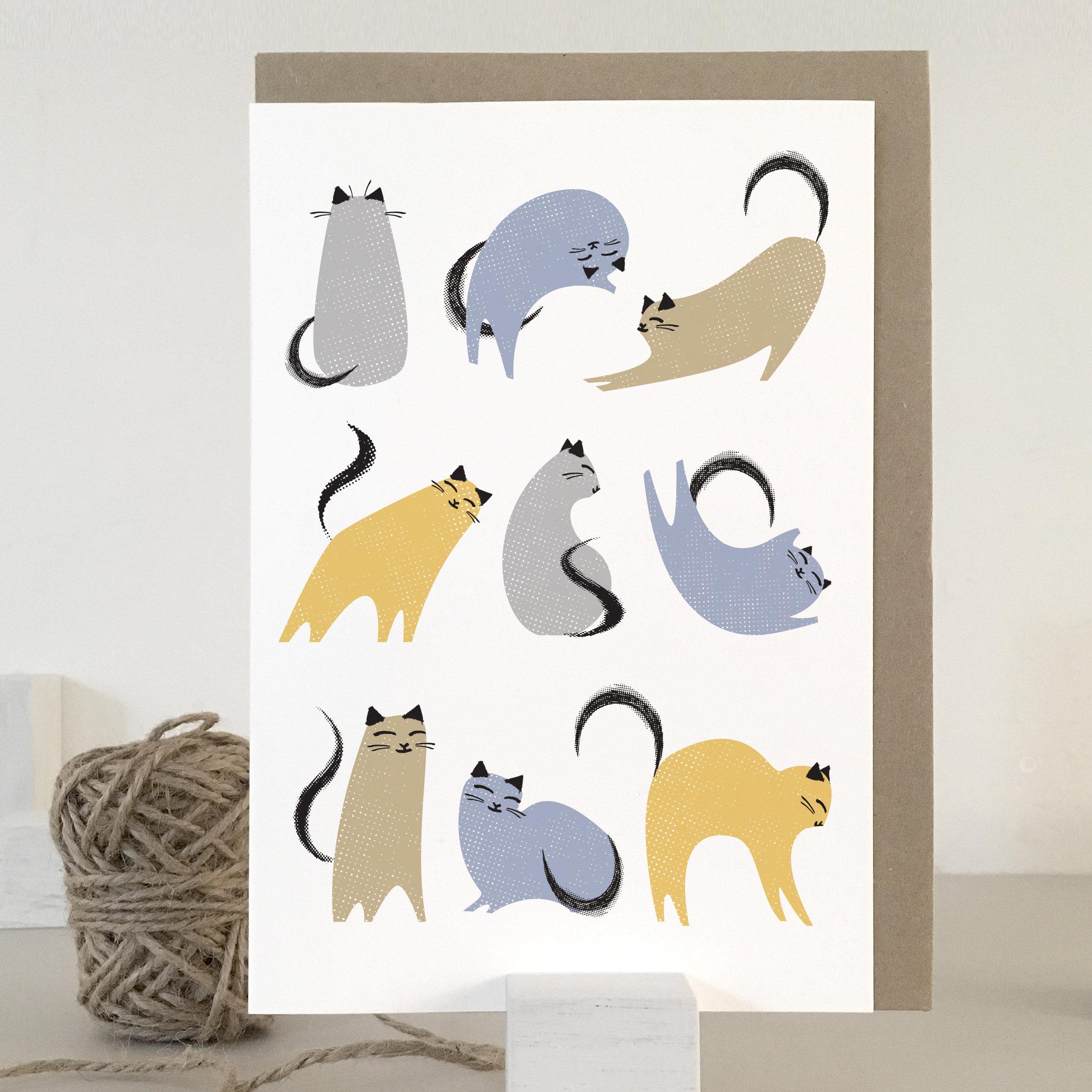 KC02_multi-colour cats
