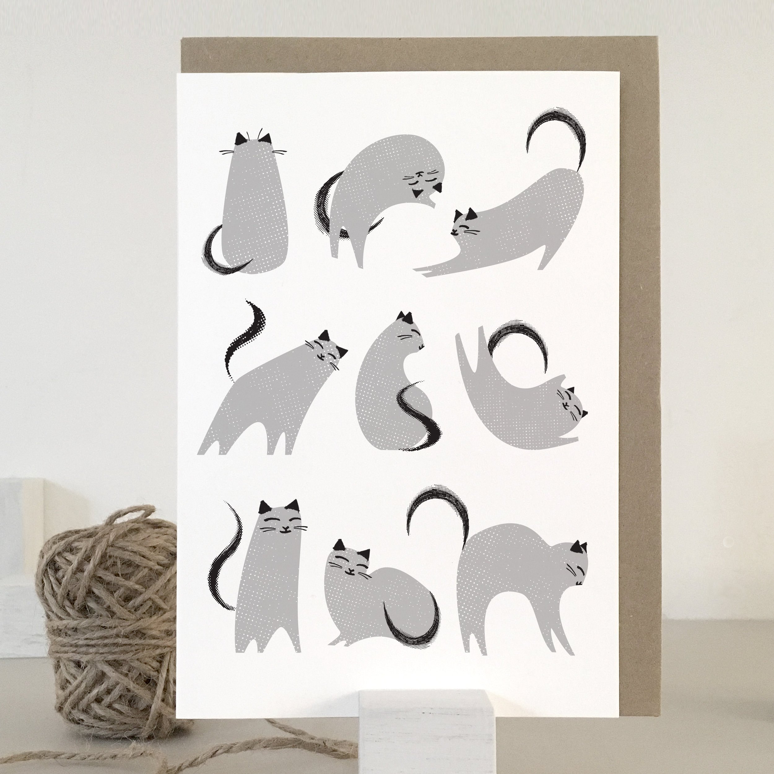 KC01_grey cats